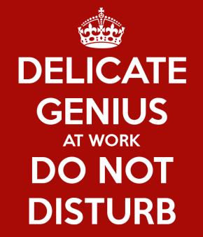 delicate-genius-at-work-do-not-disturb-1