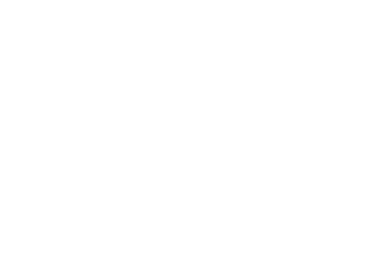 VIIIEdition-AsconaFilmFestival-2019.png